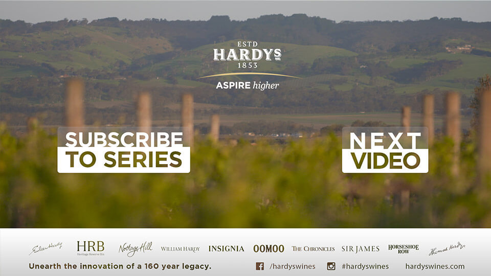 hards wine glenn mcgrah cricket video film storytelling mindconsole